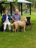 Sandra, Bob, and Lizzy (spotted a squirrel)!